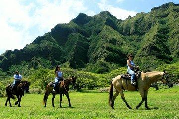 Kualoa Ranch - Horseback Walking Tour