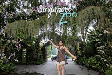 Singapore Zoo Morning Tour (Shared Transfer)