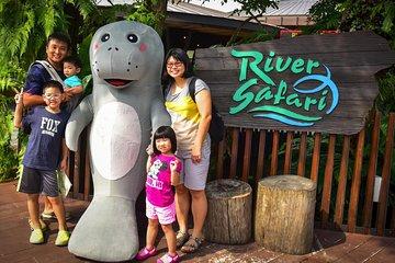 Singapore Zoo & River Safari-COMBO (Shared Transfer)