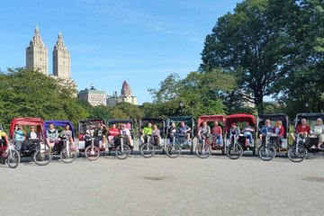 Classic 1.5-hour Central Park Pedicab Tour