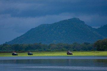 Udawalawe National Park Safari from Bentota