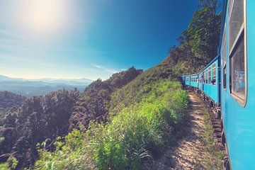 THE TOP 10 Nuwara Eliya Tours & Sightseeing (w/Prices)