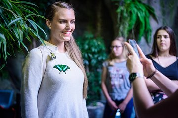 Skip the Line: Prague - Papilonia - Butterfly House Ticket
