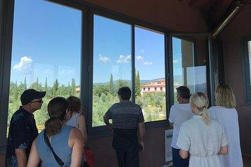 Wine Tour - 2 splendid wineries in Bolgheri