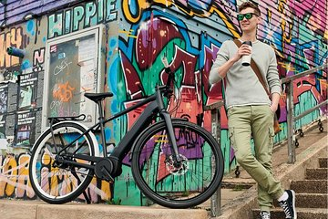 Amazing Vienna on Electric Bike Tickets