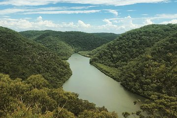 Kayak Berowra Valley