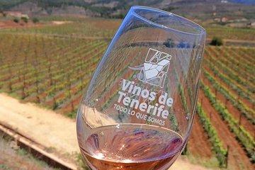 Vine & Wine Tasting Tours