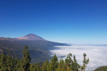 Taxi Tour through Teide National Park and La Laguna