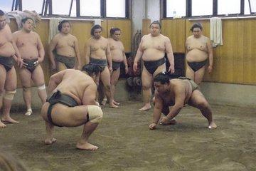 Sumo Stable Morning Training Watching Tour 2021 Tokyo