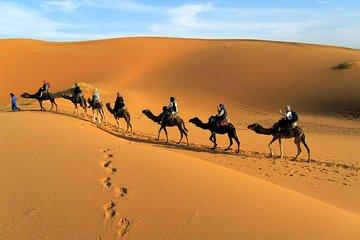 Dessert Tour from Marrakech 4D/3N Tickets