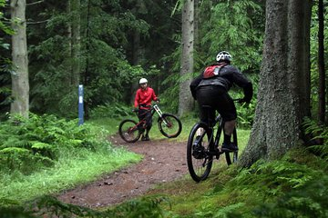 Mountain Bike Coaching Sessions