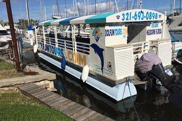 Sites de rencontre Palm Harbor