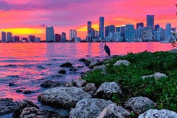 Miami Boat Nightlife Experience