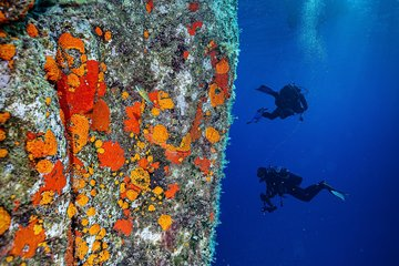 Scuba diving in Tuscany