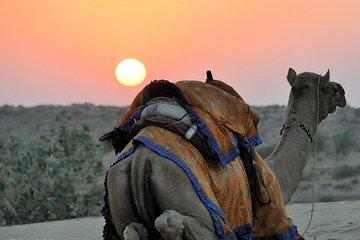 6 Days Golden Triangle with Jaisalmer Desert Safari Private Tour