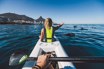 Atlantic Outlook Kayak Tour Cape Town