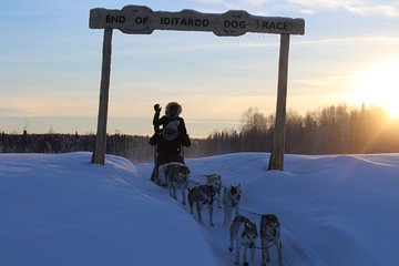 Mush Your Own Sled Dog Team (Winter Tour)