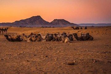 2 Days 1 Night To Zagora Desert Tour From Marrakech