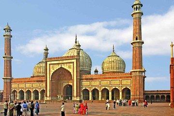 Customizable Private Delhi Tour with Professional Tour Guide