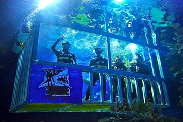 Skip the Line:Aquaria KLCC Ticket in Kuala Lumpur (QR code direct entry)