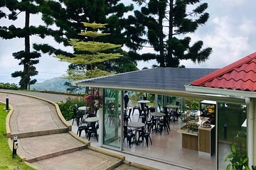 Full Day Kedah and Mount Jerai Tour with Lunch from Penang