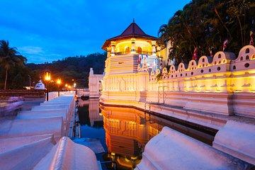3 Days Tour to Kandy Nuwara Eliya & Sigiriya from Colombo