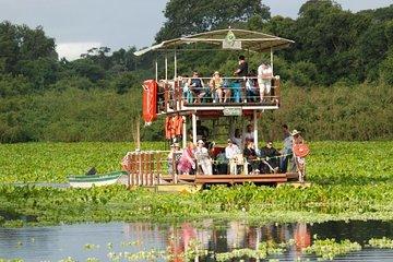 Pantanal Day Trip - All Inclusive - Leaving Campo Grande