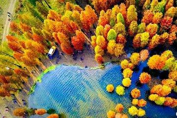 1-dagers Siming Lake Fall løvverk tur...