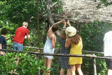 Cultural and Historical Tour in Malindi