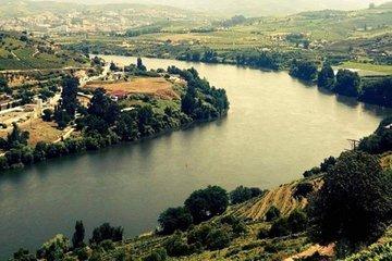 O Melhor do Vale do Douro - Tour do...