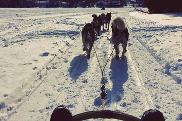 Initiation to the dog sled