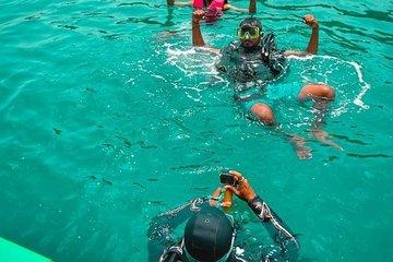 Half day visit to Grand island,fishing,Dolphin sighting & Snorkeling