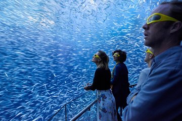 National Geographic Encounter: Ocean Odyssey Entry Ticket