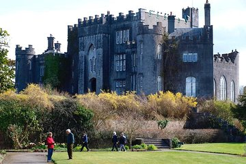 Birr Castle - Wikipedia