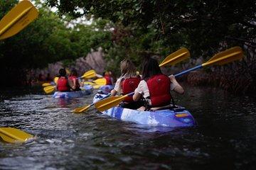 Bioluminescent Bay Kayak Adventure Tour from San Juan