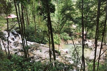 Tour To A Wonderful Waterfall In A Rainforest