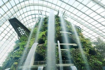 Gardens By The Bay Ticket including One-Way Transfer
