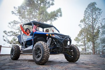 ON & OFF Road Volcanic Buggy Safari