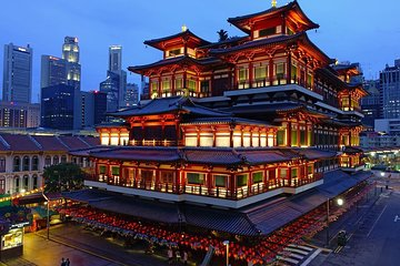 6-Hours Singapore Tour in Private Car or Minibus with Driver