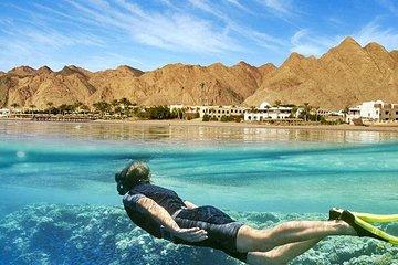 Sharm el Naga Tour
