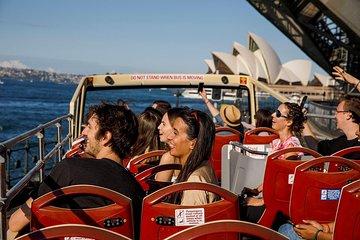 Sydney Excursion: Big Bus Sydney and Bondi Hop-On Hop-Off Tour