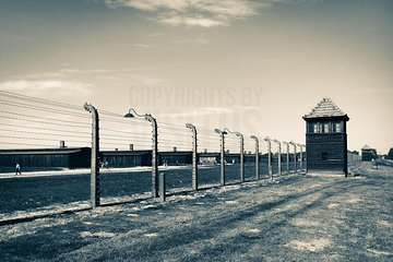 Auschwitz Birkenau: Complete Guided Tour with Private Transportation Tickets