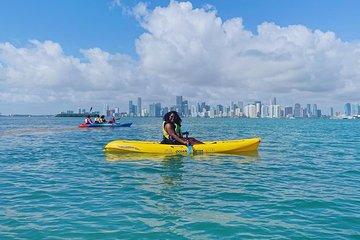 Miami's Best Kayak & Paddleboard Rentals