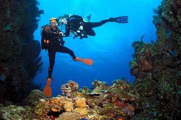 Dive 3 Points on Bunaken Island Including Lunch and Hotel Transfer