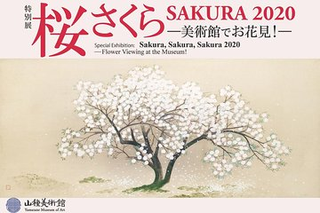 [Special exhibition] Sakura Sakura SAKURA 2020-Cherry blossom viewing at the museum!