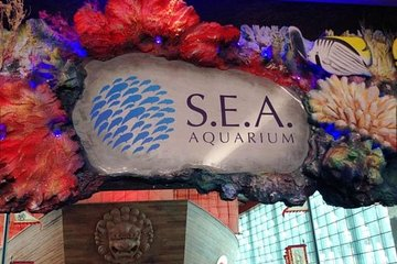 Skip the LineWorld's Largest Underwater Acrylic Dome at S.E.A. Aquarium Ticket