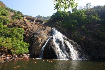 Mollem National Park, Dudhsagar, Jeep Safari & Spice Plantation from South Goa