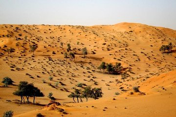 Overnight Camping in Ras Al Khaimah- transfer from Dubai/Sharjah/Ajman