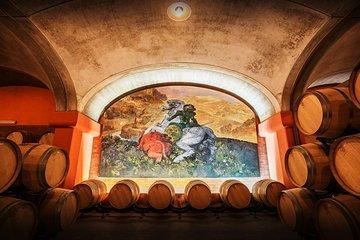 Suvereto. O vinho Supertuscans pousa TOUR PRIVADO de Livorno