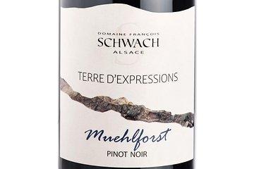 À la rencontre des grands vins de Terroir